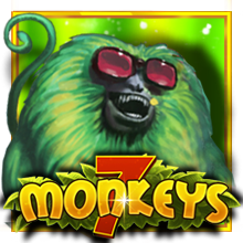 7 Monkeys JP